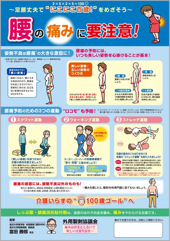 http://www.gaiyokyo.org/cms/img/poster_h24.jpg